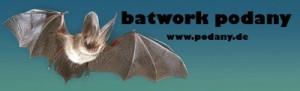 400_Batwork_Podany